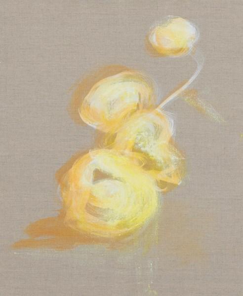 Coings n°12b, pigments sur toile, 50 x 61 cm