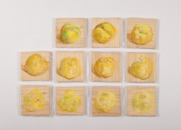 Effacement n° 29, pigments sur gaze marouflée sur bois, 11 pièces de 15 x 15 cm