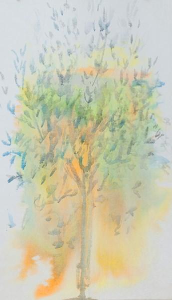 Olivier - rive, encres couleurs sur textile, 54 x 90 cm
