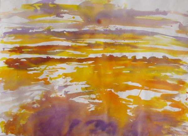 Ré, marais 2, ink on arches paper, 76 x 55 cm each