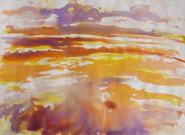 Ré, marais 1, ink on arches paper, 76 x 55 cm each