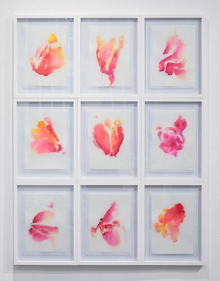 Danse des Cyclamens, encres sur doubles papiers coton et japons, ensemble de 9 pièces 30 x 40 cm